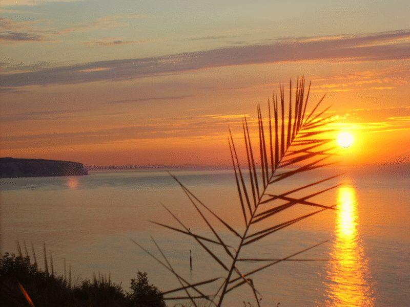 26 Sunrise